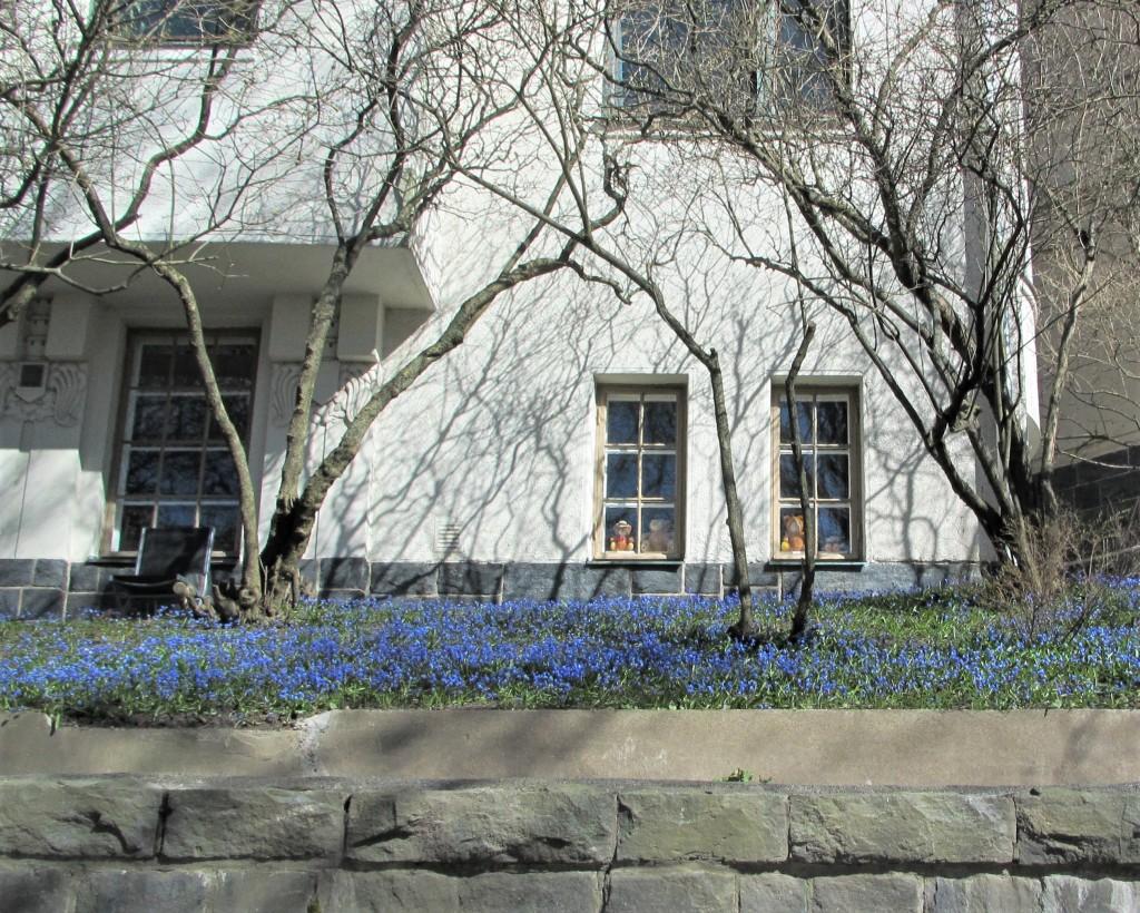 Eira nallet ikkunassa Ehrensvärdintiellä